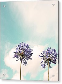 Reaching For The Sky Acrylic Print
