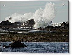 Acrylic Print featuring the photograph Reaching For The Sky by Dave Files
