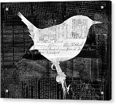 Reader Bird Acrylic Print