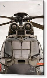 Ready For Action Acrylic Print by Ray Warren