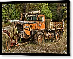 Ready For Snow By Ron Roberts Acrylic Print