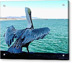 Ready For Takeoff Acrylic Print by Brian D Meredith