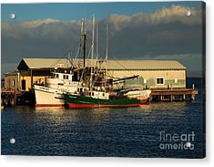 Ready For The Day Acrylic Print by Adam Jewell