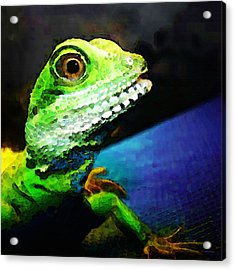Ready To Leap - Lizard Art By Sharon Cummings Acrylic Print by Sharon Cummings