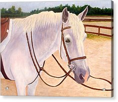 Acrylic Print featuring the painting Ready To Ride by Karen Zuk Rosenblatt