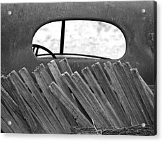 Rear View Acrylic Print by Tom DiFrancesca