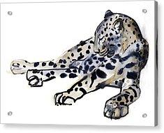 Recumbent Acrylic Print