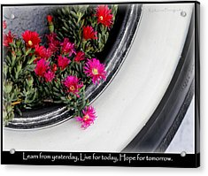 Recycle Lifecycle Acrylic Print by Kip Krause
