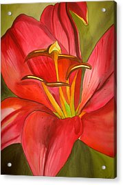 Red Alert Lily Acrylic Print by Sacha Grossel