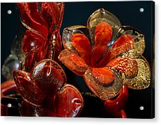 Red And Gold Acrylic Print by Glenn DiPaola