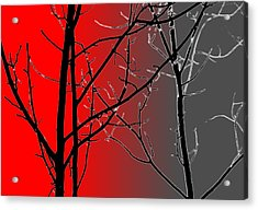 Red And Gray Acrylic Print
