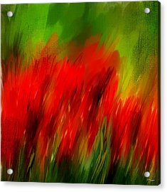 Red And Green Acrylic Print by Lourry Legarde