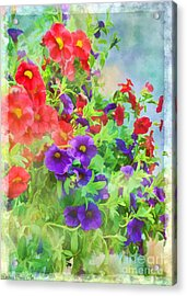 Red And Purple Calibrachoa - Digital Paint I Acrylic Print by Debbie Portwood