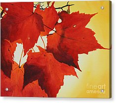 Red And Yellow Acrylic Print