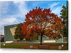 Red And Yellow Tree At The Front Of The Museum Of The History Of Polish Jews In Warsaw Acrylic Print