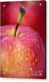 Red Apple Macro Acrylic Print