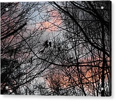 Red At Night Acrylic Print by Penny Homontowski
