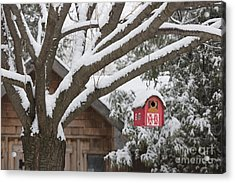 Red Barn Birdhouse On Tree In Winter Acrylic Print by Elena Elisseeva