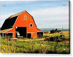 Red Barn In Field Near Joseph, Wallowa Acrylic Print by Nik Wheeler