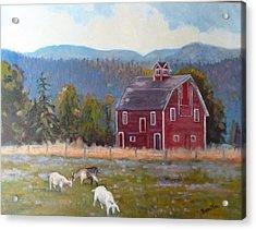 Red Barn In Montana Acrylic Print by Bonita Waitl