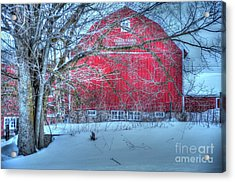 Red Barn In Winter Acrylic Print by Terri Gostola