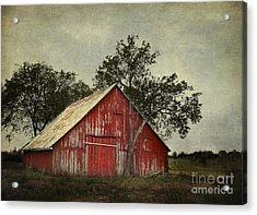 Red Barn With A Tree Acrylic Print