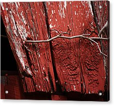 Acrylic Print featuring the photograph Red Barn Wood With Dried Vine by Rebecca Sherman