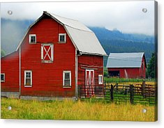 Red Barns Acrylic Print by Mamie Gunning