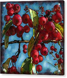 Red Berries Acrylic Print by Colleen Kammerer