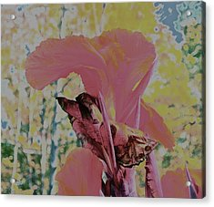 Red Bloom Acrylic Print