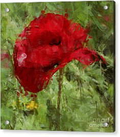 Acrylic Print featuring the photograph Red Bloomers by Julie Lueders