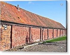 Red Brick Bard Acrylic Print by Tom Gowanlock