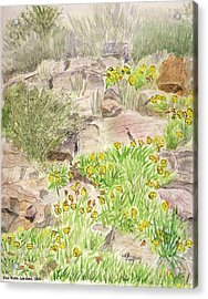 Red Butte Gardens Acrylic Print