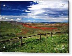 Red Canyon Wyoming Acrylic Print