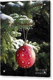 Red Christmas Ball On Fir Tree Acrylic Print by Elena Elisseeva