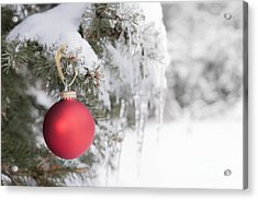 Red Christmas Ornament On Icy Tree Acrylic Print by Elena Elisseeva