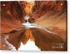 Red Cliffs Symphony Acrylic Print