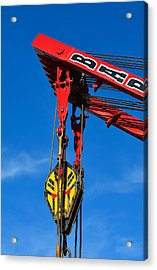 Red Crane - Photography By William Patrick And Sharon Cummings Acrylic Print by Sharon Cummings