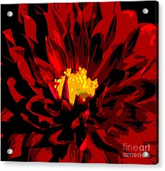 Acrylic Print featuring the photograph Red Dahlia Abstract by Olivia Hardwicke