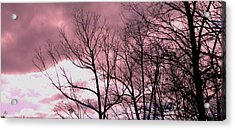 Acrylic Print featuring the photograph Red Dawn by Candice Trimble
