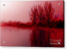 Acrylic Print featuring the photograph Red Dawn by Julie Lueders