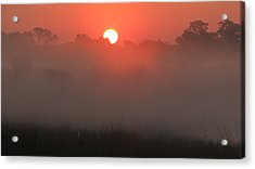 Acrylic Print featuring the photograph Red Dawn by Peg Urban