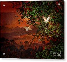 Red Dawn Sparrows Acrylic Print by Bedros Awak