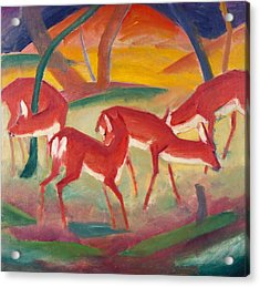 Red Deer 1 Acrylic Print by Franz Marc