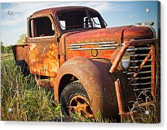 Acrylic Print featuring the photograph Red Diamond by Steven Bateson