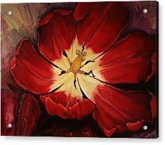 Red Downside Acrylic Print by Jean Cormier