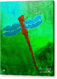 Red Dragonfly Acrylic Print by Anita Lewis