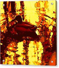 Red Duck Lake 6 Acrylic Print by Amy Vangsgard