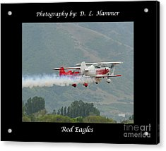 Red Eagles Acrylic Print by Dennis Hammer