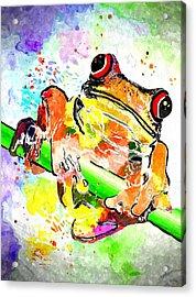 Red Eyed Tree Frog Grunge Acrylic Print by Daniel Janda